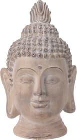Buddha Figura decorativa Do it + Garden 657906200000 Colore Crema Taglio L: 39.0 cm x L: 37.5 cm x A: 50.0 cm N. figura 1