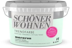Trendfarbe Matt Macaron 1 l Schöner Wohnen 660967900000 Farbe Macaron Inhalt 1.0 l Bild Nr. 1
