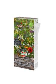 Blumenmischung Wildblumenzauber Blumensamen Sperli 650199500000 Bild Nr. 1