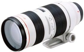 EF 70-200mm 2.8L USM Objectif Canon 785300124938 Photo no. 1
