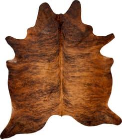 KUHHAUT Tapis 411962200070 Couleur brun Photo no. 1