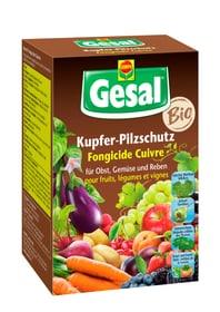 Kupfer-Pilzschutz, 70 ml Pilzkrankheiten Compo Gesal 658506800000 Bild Nr. 1