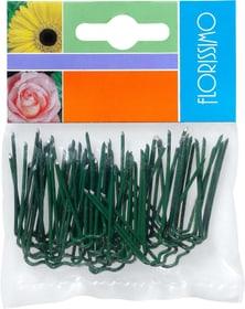 Floristik Zubehör Patenthaften Do it + Garden 657005800000 Bild Nr. 1