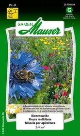 Miscela per apicoltura Sementi di fiori Samen Mauser 650117500000 N. figura 1