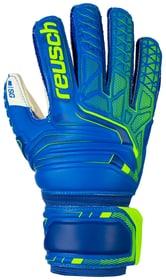 Attrakt SG Finger Support Jr. Kinder-Fussball-Torwarthandschuhe Reusch 461953004040 Grösse 4 Farbe blau Bild-Nr. 1