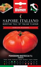 Tomate Bistecca F1 Sementi di verdura Blumen 650161800000 N. figura 1