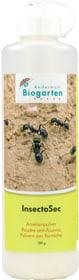 InsectoSec poudre anti-fourmis, 100 g Lutte contre les fourmis Andermatt Biogarten 658515400000 Photo no. 1
