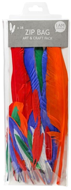 Set di piume Indiani I AM CREATIVE 666019400000 N. figura 1