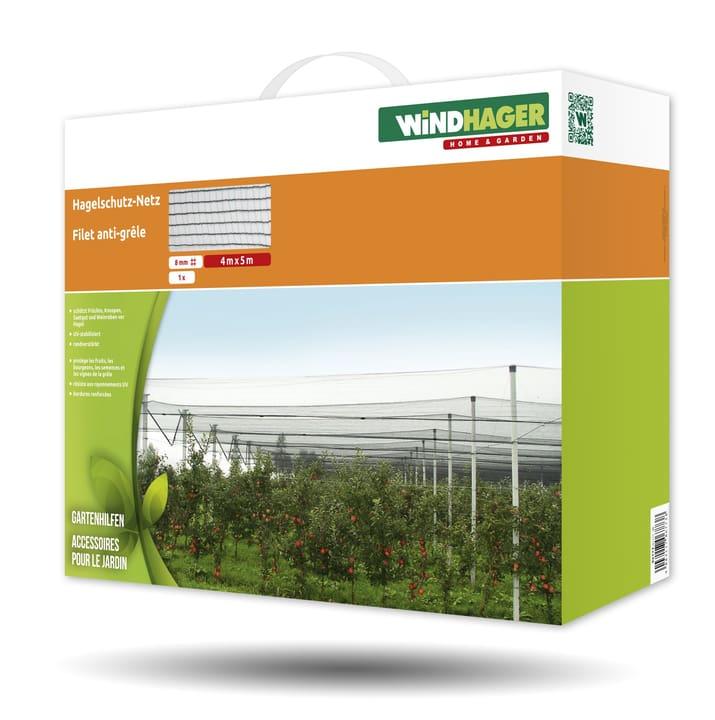 Rete antigrandine Aiuti per il giardinaggio Windhager 631261900000 N. figura 1