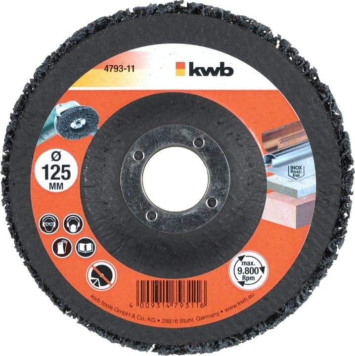 Disco pulizia 125 kwb 610524000000 N. figura 1