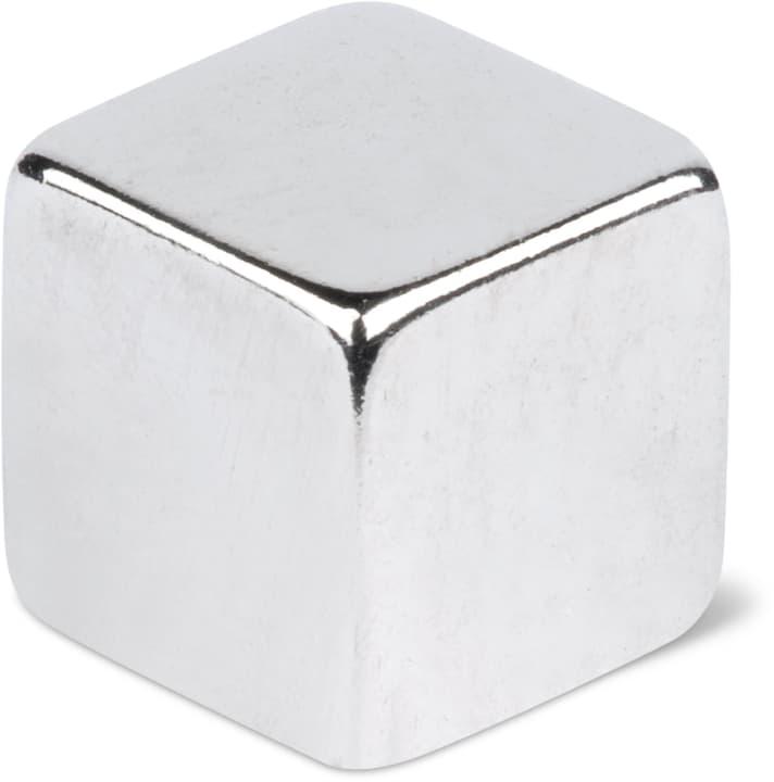 Parallelepipedi magnetici 5x5x5, 10 pez. Do it + Garden 605132500000 N. figura 1