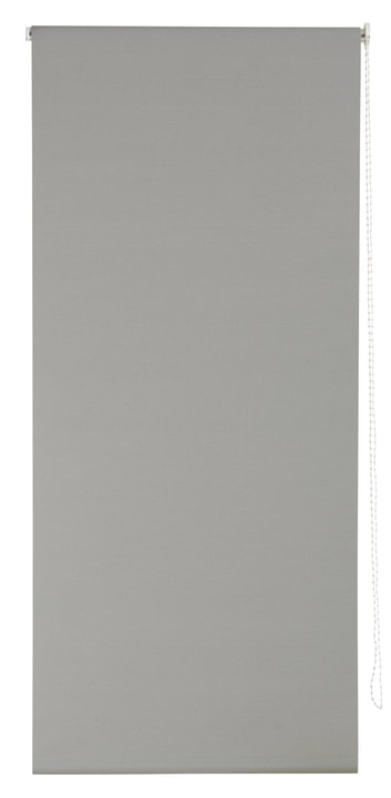 POLAR Store enrouleur 430746110280 Couleur Gris Dimensions L: 102.0 cm x H: 185.0 cm Photo no. 1