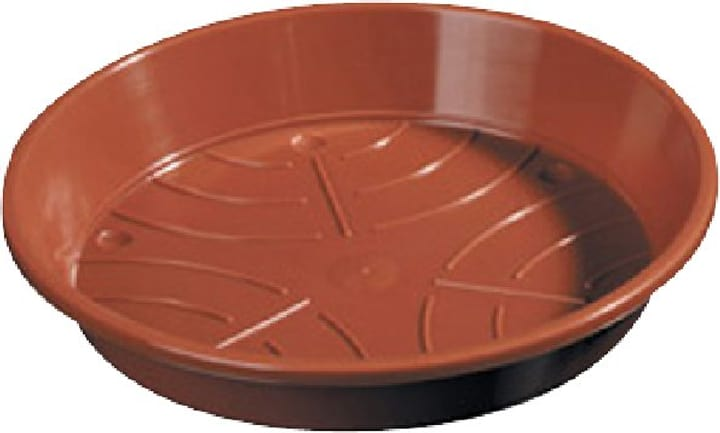 Sottovaso in materia sintetica 659445900000 Taglio ø: 18.0 cm Colore Marrone N. figura 1