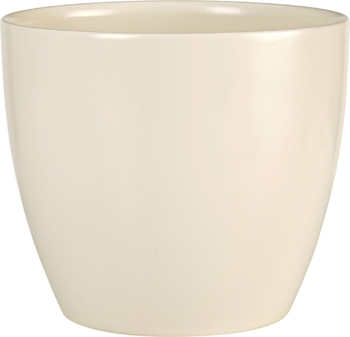 Cache-pot brillant Scheurich 657435300000 Taille ø: 14.0 cm Couleur Beige Photo no. 1
