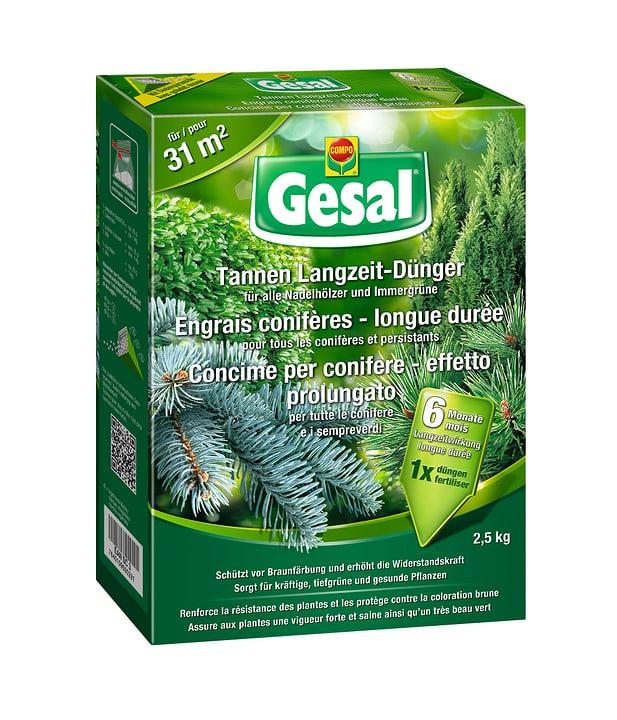 Concime per conifere - effetto prolungato, 2,5 kg Compo Gesal 658232600000 N. figura 1