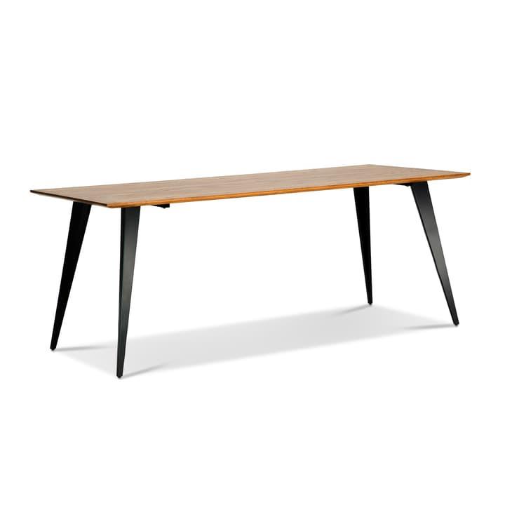 WILLIAM Table 366157400000 Photo no. 1