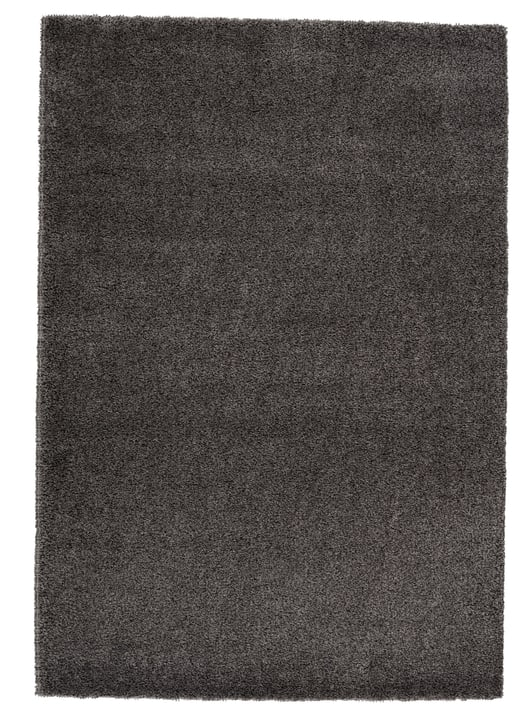 MYRIAM Tapis 411982112081 Couleur gris clair Dimensions L: 120.0 cm x P: 170.0 cm Photo no. 1