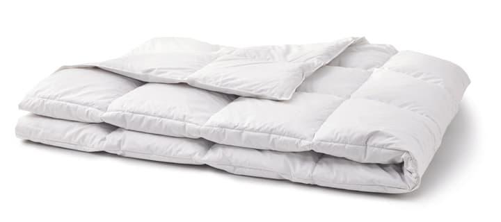 OPTIMADAUN medium warm Couette pour toute l'année avec 60% de duvet 451745112310 Couleur Blanc Dimensions L: 160.0 cm x P: 210.0 cm Photo no. 1