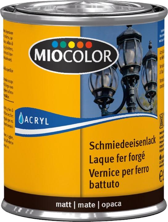 Laque fer forgé Miocolor 661444200000 Couleur Noir Contenu 125.0 ml Photo no. 1