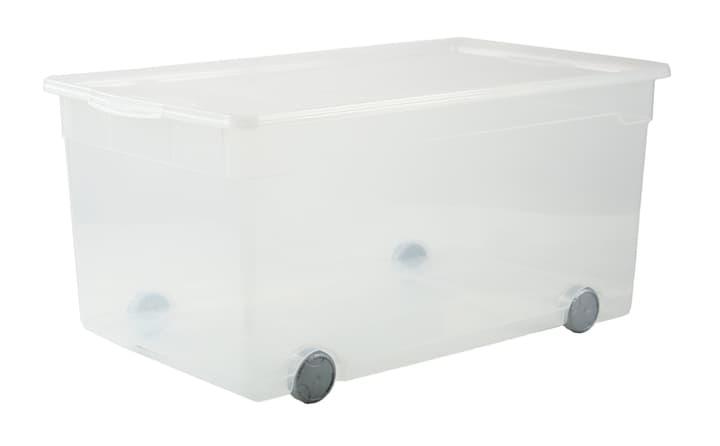 Clear Box Roller Rotho 603356700000 Bild Nr. 1
