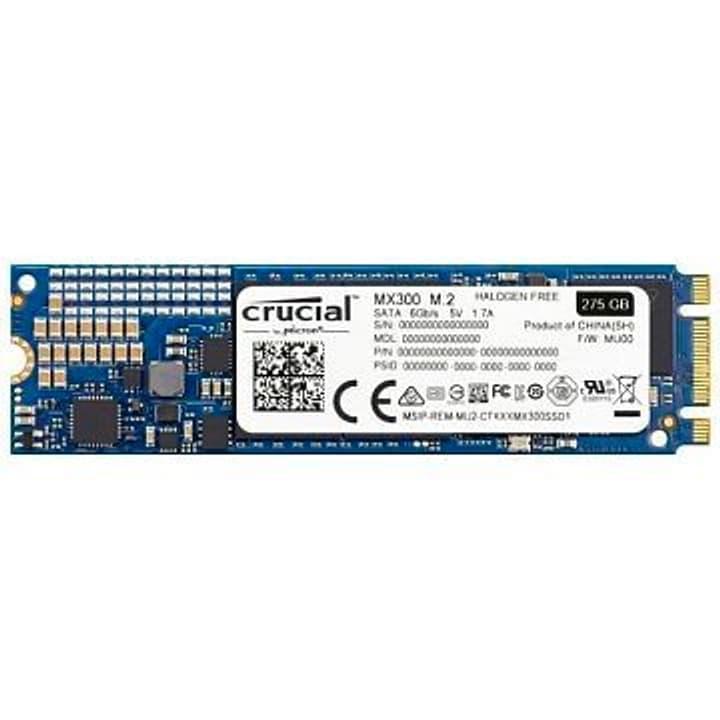 Crucial MX300 SSD 275GB M.2 2280 Crucial 785300124277 Photo no. 1