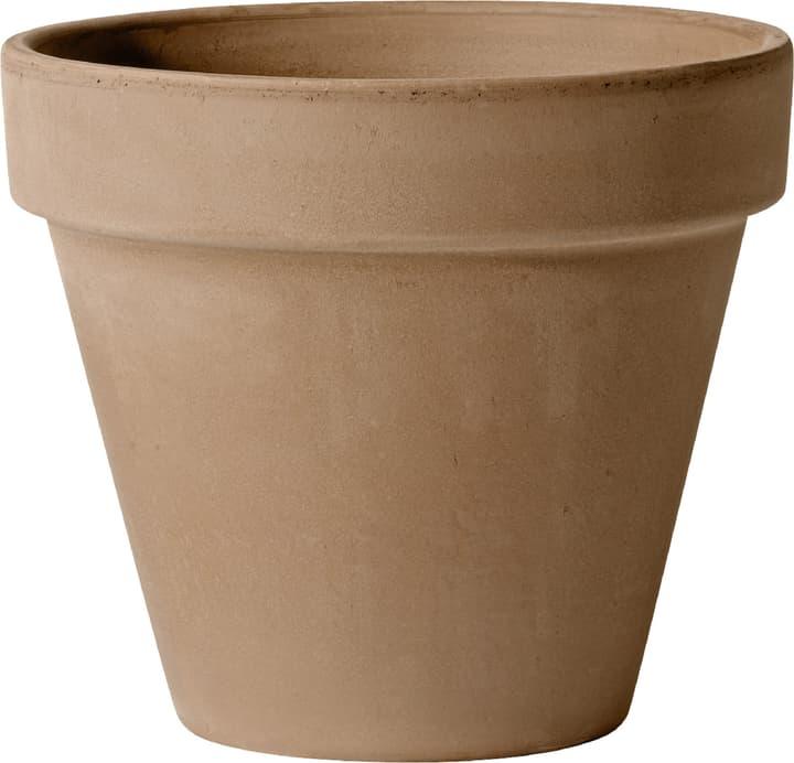 Pot en argile Deroma 659530300000 Taille ø: 13.06 cm x H: 11.3 cm Couleur Mocca Photo no. 1