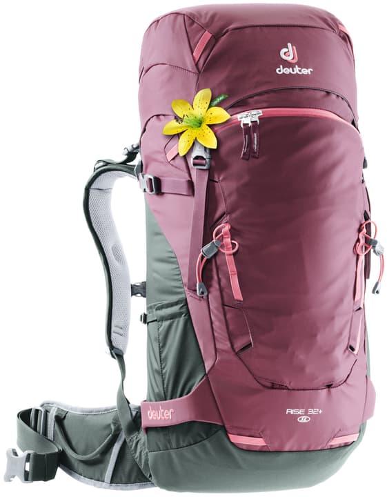 Rise 32+ SL Zaino da escursionismo per donna Deuter 460259700017 Colore lampone Taglie Misura unitaria N. figura 1