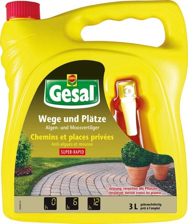 Wege und Plätze, Algen- und Moosvertilger SUPER-RAPID, 3 l Compo Gesal 658508200000 Bild Nr. 1