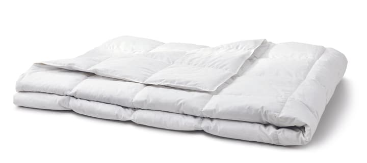 OPTIMADAUN LIGHT Duvet 451745512410 Couleur Blanc Dimensions L: 160.0 cm x P: 240.0 cm Photo no. 1