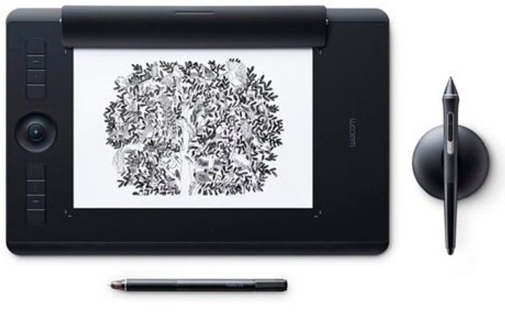 Intuos Pro Paper M Tablette graphique Wacom 785300129130 Photo no. 1