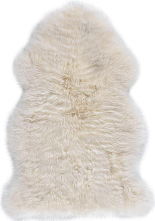DAISY Toison 412001905110 Couleur blanc Dimensions L: 50.0 cm x P: 90.0 cm Photo no. 1