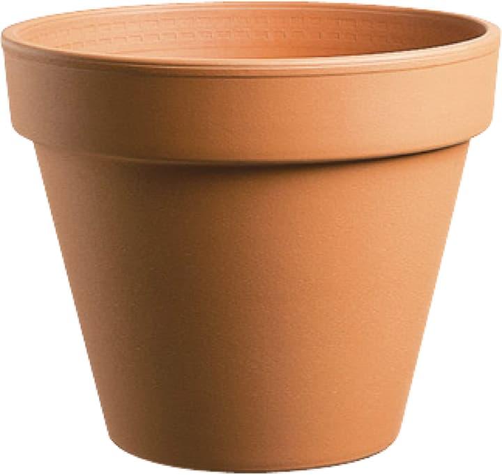 Vaso in terracotta Deroma 659529200000 Colore Marrone Taglio ø: 4.8 cm x A: 4.0 cm N. figura 1