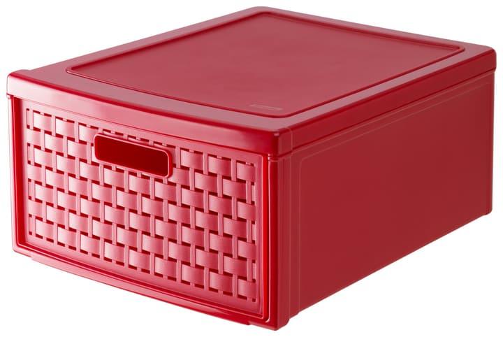 Schubladenbox gross COUNTRY Rotho 604038000000 Bild Nr. 1