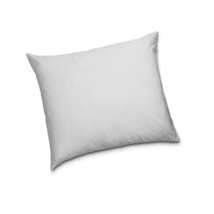 CLASSIC LOW Cuscino di piume di qualità superiore con protezione contro gli acari della polvere 376053400000 Dimensioni L: 65.0 cm x L: 65.0 cm Colore Bianco N. figura 1