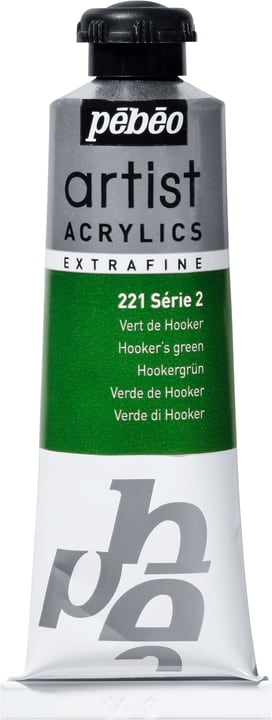 Pébéo Acrylic Extrafine Pebeo 663509022100 Couleur Vert de Hooker Photo no. 1