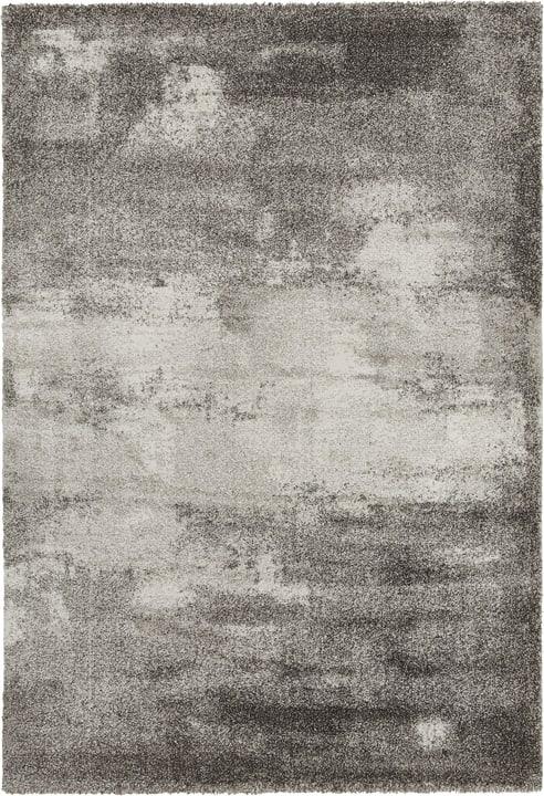 INIGO Teppich 412018912080 Farbe grau Grösse B: 120.0 cm x T: 170.0 cm Bild Nr. 1