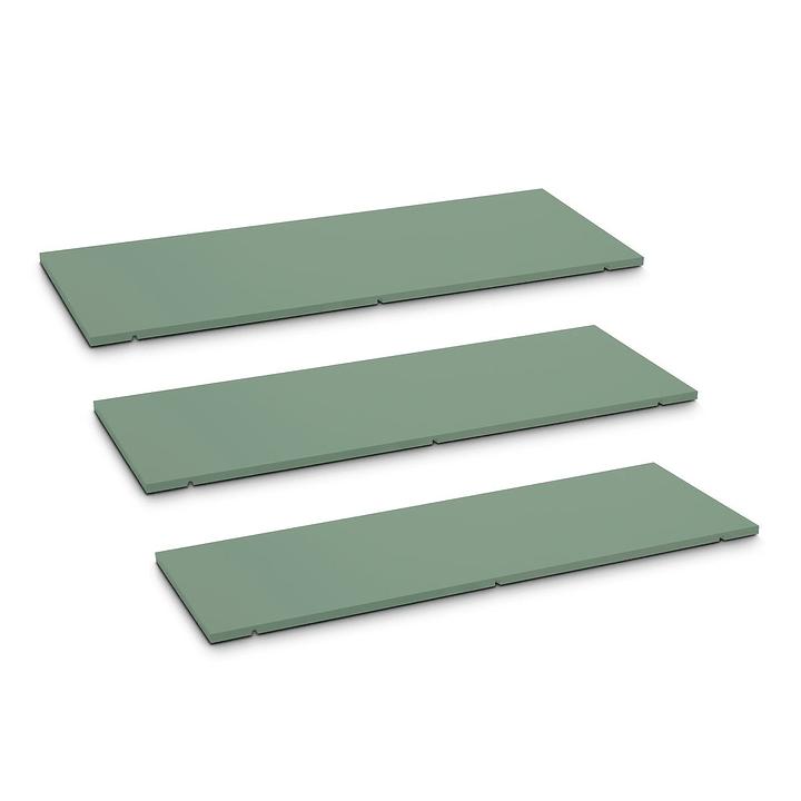 SEVEN Ripiano set da 3 90cm Edition Interio 362019951105 Dimensioni L: 90.0 cm x P: 1.4 cm x A: 35.5 cm Colore Verde N. figura 1