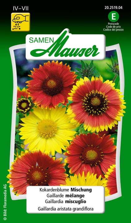 Gaillardia mélange Samen Mauser 650104501000 Contenu 1 g (env. 100 plantes ou 4 - 5 m²) Photo no. 1