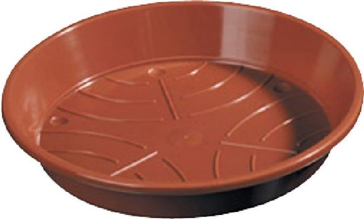 Sottovaso in materia sintetica 659446100000 Taglio ø: 24.0 cm Colore Marrone N. figura 1