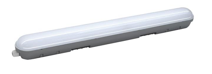 LED 14W Lampada per locali umidi Do it + Garden 615030800000 N. figura 1