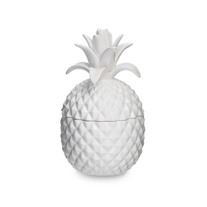 ANANAS récipient en céramique 396017100000 Dimensions L: 11.0 cm x P: 11.0 cm x H: 20.0 cm Couleur Blanc Photo no. 1