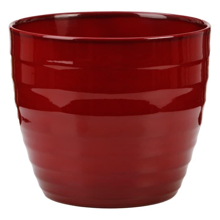 Cache-pot Scheurich 657555300019 Taille ø: 19.0 cm x H: 17.0 cm Couleur Rouge Photo no. 1
