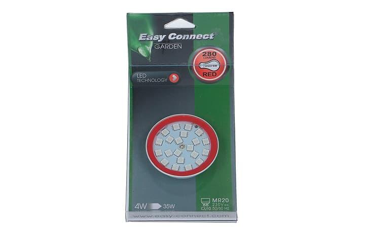 Agent lumineux LED MR20/GU10 verte 613195900000 Photo no. 1