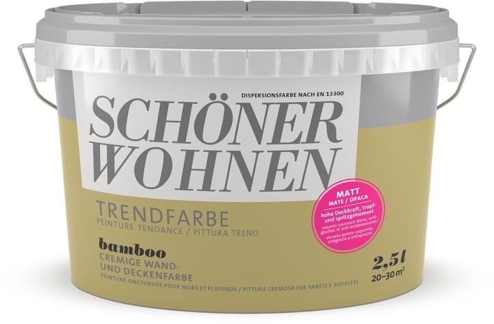 Couleur tendance mate Bamboo 2.5 l Schöner Wohnen 660942400000 Couleur Bamboo Contenu 2.5 l Photo no. 1