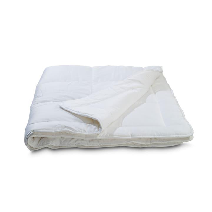 BAMBOO Couette en fibre naturelle 376041900000 Couleur Blanc Dimensions L: 210.0 cm x L: 160.0 cm Photo no. 1
