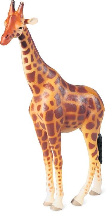 Tiptoi Giraffe 746963400000 Bild Nr. 1