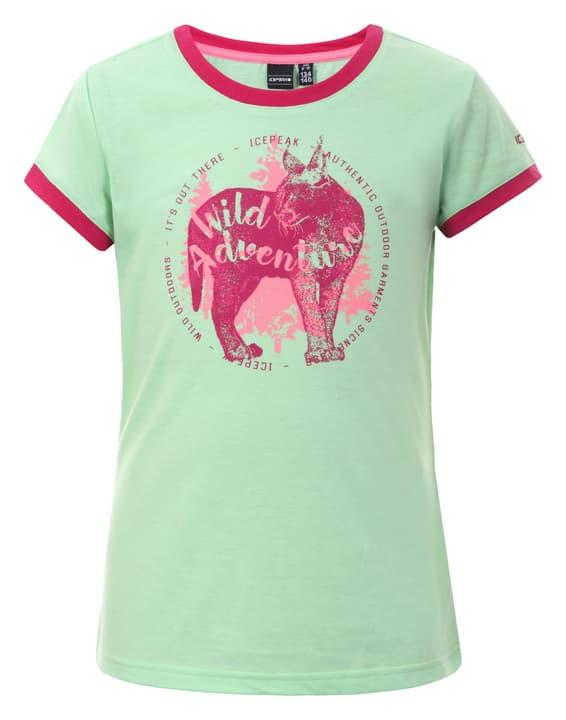 Kamas Kinder-T-Shirt Icepeak 466983614069 Grösse 140 Farbe lindgrün Bild-Nr. 1