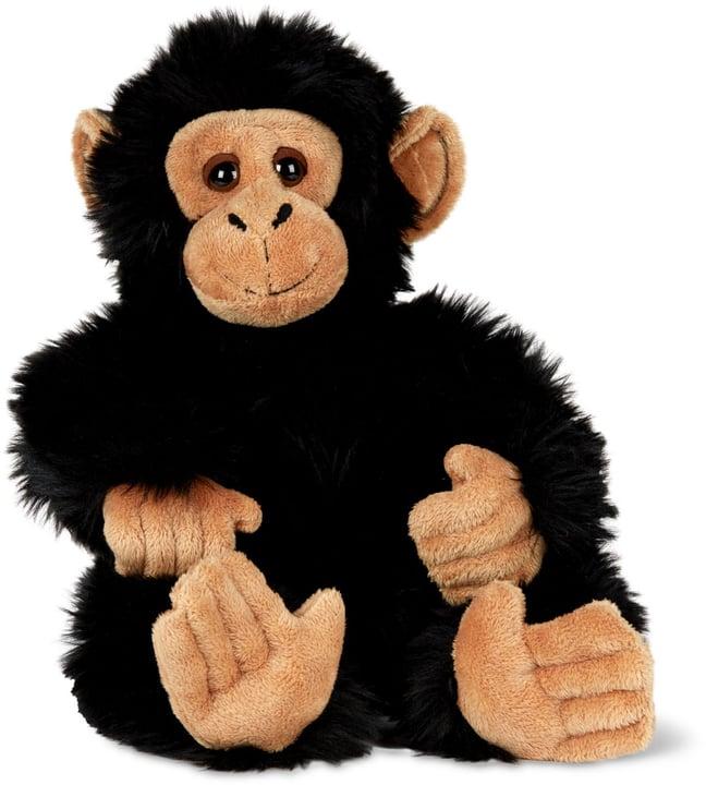 Scimpanzé 746756800000 N. figura 1