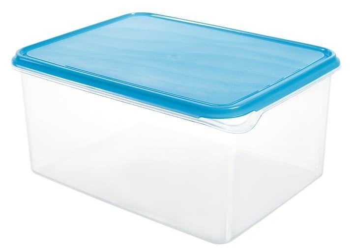 COOL Boîte pour réfrigérateur 8.0L M-Topline 702906000000 Photo no. 1