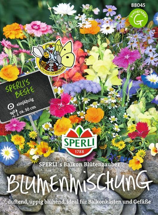 Sperli´s Balkon Blütenzauber Semences de fleurs Sperli 650178600000 Photo no. 1